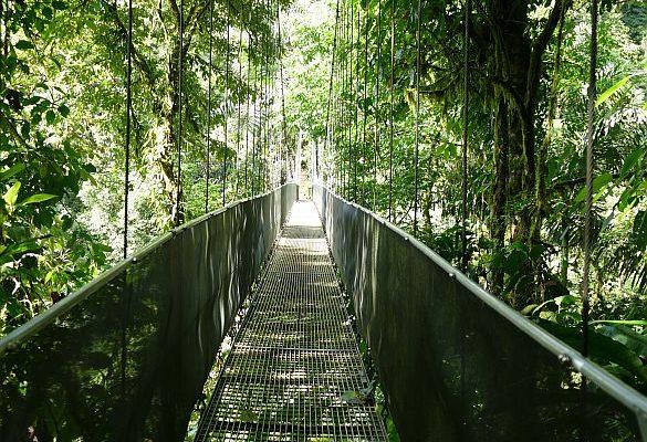 arenal hanging bridges 2