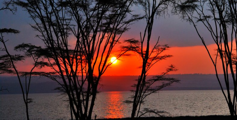 apus de soare kenya
