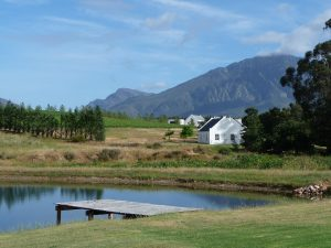 winelands articol 2 self-drive