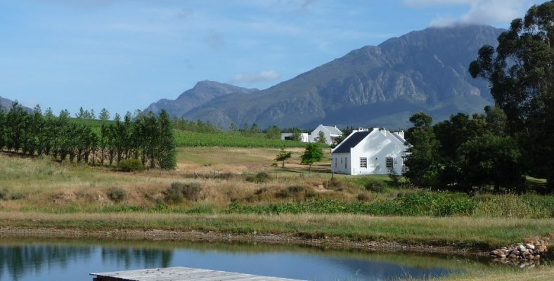 winelands-2011397_960_720