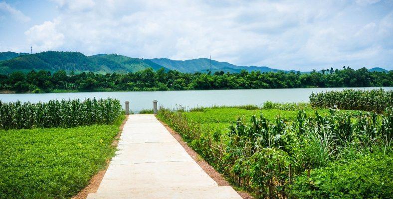 Thuy Bieu, Perfume River
