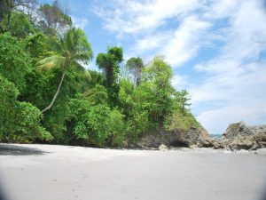 plaja Pacific