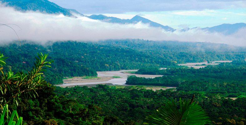 articol 6 - peru - manu national park