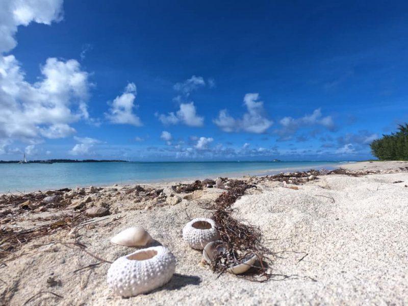 testimonial mauritius 2 mada