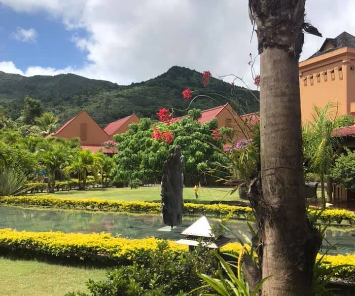 testimonial mauritius 7 mada