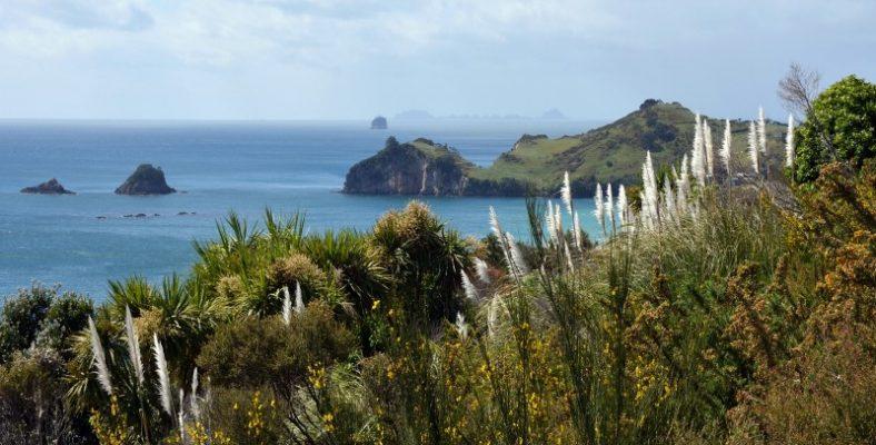 coromandel-peninsula-new zeeland