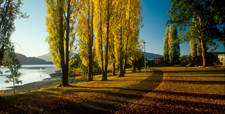 wanaka_to_te_anau - new zeeland