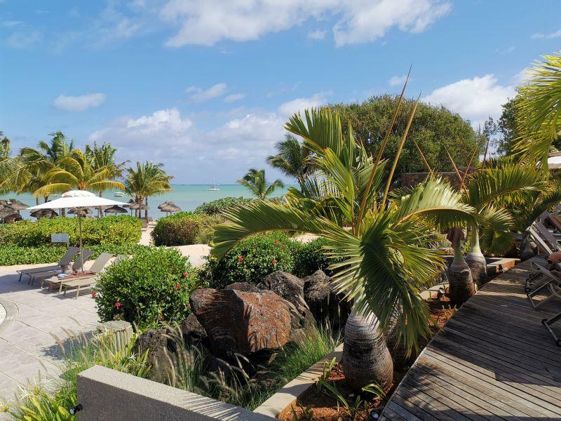 Mauritius covid 15