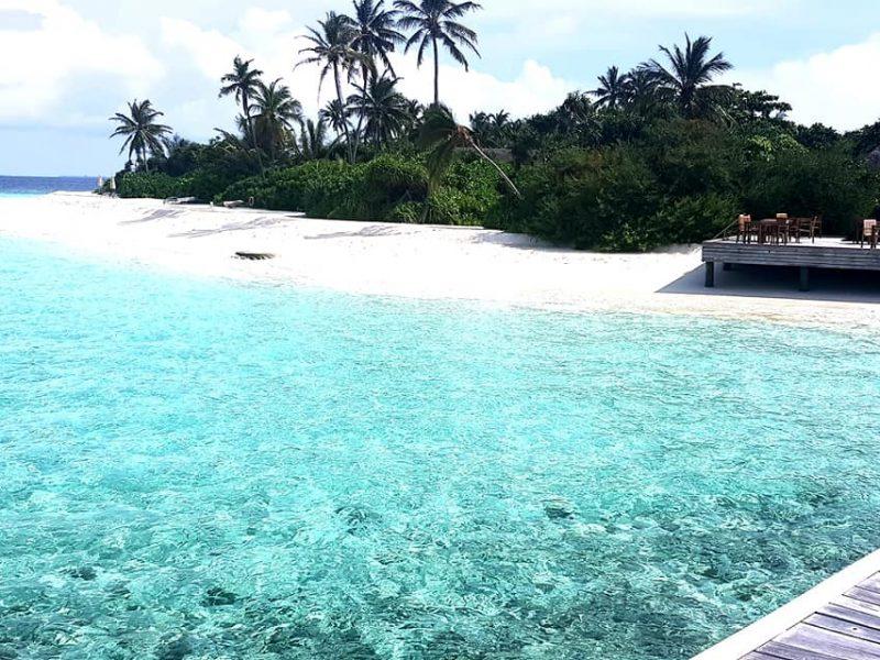 maldive_testimonial4