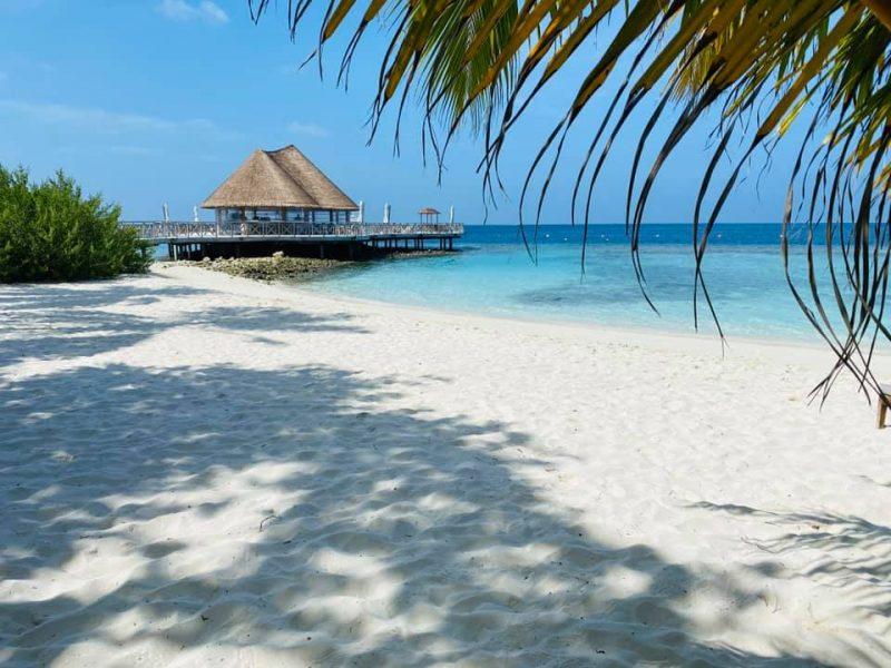 testimonial_maldive_bandos