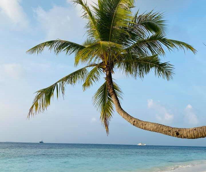 testimonial_maldive_bandos5